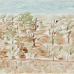 Olive Grove, Masseria Aprile, Locorotondo, Apulia, 4.16.11