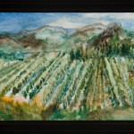 Vineyard, 2010
