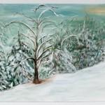 Snow Trees, Nevada City, Feb. 2001