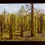 After September 11: Woods near Blairsden, CA, Sept. 14, 2001